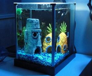spongebob, aquarium, and pineapple image