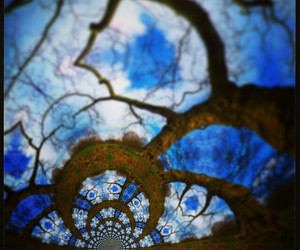blue, larrycarlson, and trees image