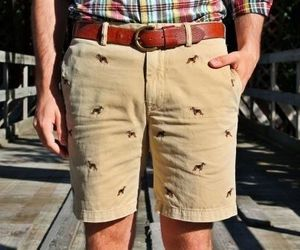 embroidered, shorts, and tan image