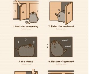 cat, pusheen, and cupboard image