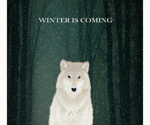 art, winter, and wolf image