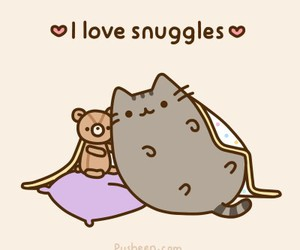 cat, pusheen, and snuggle image