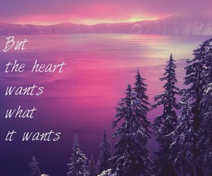 for you, pink and purple, and quotes image