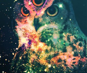 owl, galaxy, and eyes image
