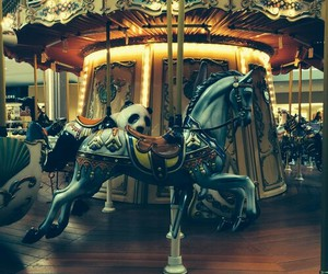 horse, photography, and carousel image