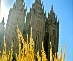 black and white, Temple, and mormon image