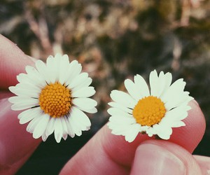 photography, lovelyphotos, and weheartit image