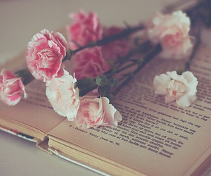 flower, pink, and book image
