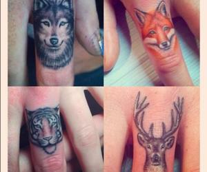 deer, finger, and fox image