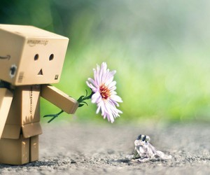 danbo, flower, and frog image