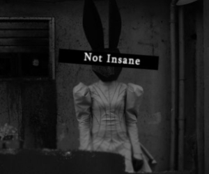 insane, black and white, and rabbit image