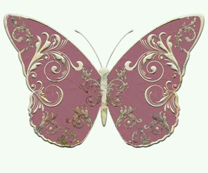 butterfly, pink, and delicate image