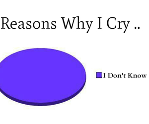 cry, fact, and fun image