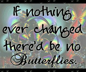 butterflies and saying image