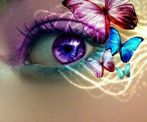 butterflies, colorful, and eye image