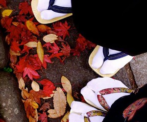 fall, autumn, and japanese image