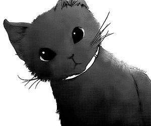 cat, manga, and neko image
