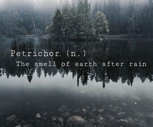 rain, earth, and nature image