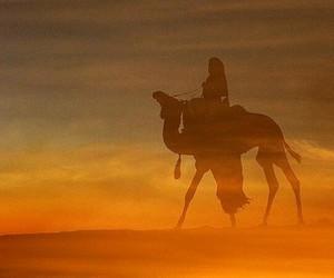 touareg, paysages, and chameau image