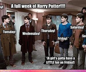 funny and harry potter image