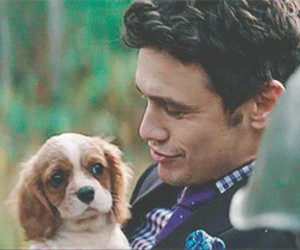 dog, james franco, and puppy image