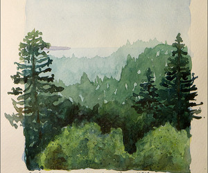 forest, watercolor, and painting image