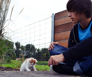 cute, boy, and cat image
