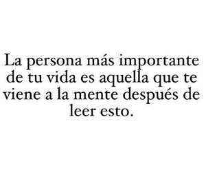 frases, text, and amor image