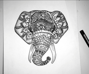 drawing, elephant, and pen image