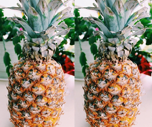 fruit, hipster, and pineapple image