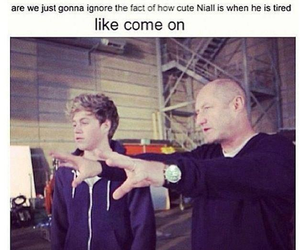 one direction, niall horan, and cute image