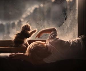 cat, child, and kitten image