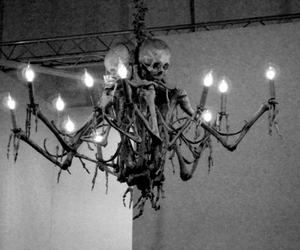 skull, skeleton, and chandelier image