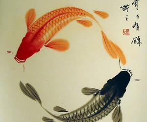 black, orange, and fish image
