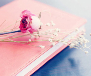 pink, book, and rose image