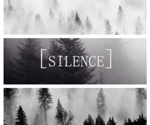 black and white, grunge, and silence image