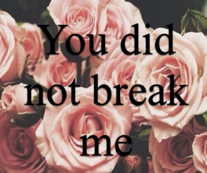 break, pink, and Sia image