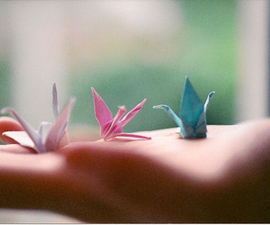 bird, origami, and photography image