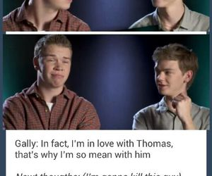 newt, gally, and thomas image