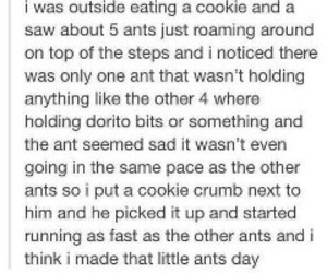 ants, fun, and funny image