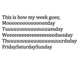 week, monday, and friday image