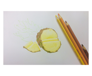 drawing and pineapple image