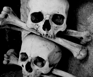 black and white, Darkness, and skulls image