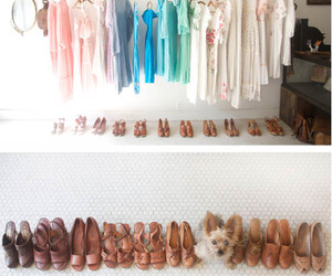 dog, dresses, and shoes image