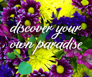 flowers, paradise, and discover image