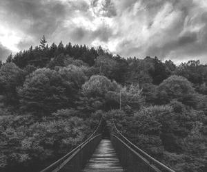 Image by Meltem