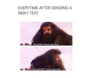 funny, text, and harry potter image