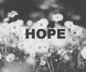 hope, flowers, and black and white image