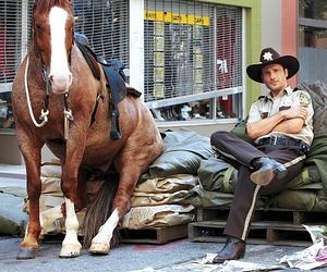 the walking dead, horse, and twd image
