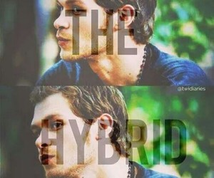 hybrid, the, and klaus image